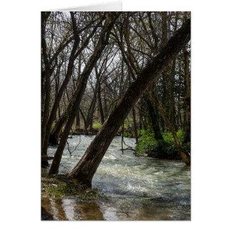 Springtime At Finley River Card
