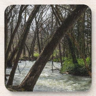 Springtime At Finley River Coaster