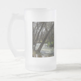Springtime At Finley River Frosted Glass Beer Mug