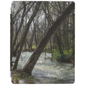 Springtime At Finley River iPad Cover