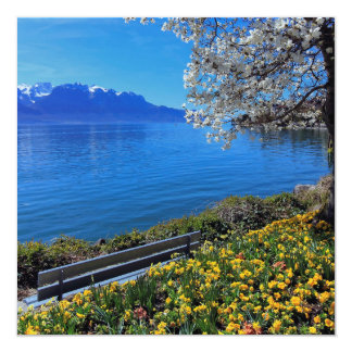 Springtime at Geneva or Leman lake, Montreux, Swit Card