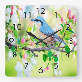 Springtime Blue Jay Square Wall Clock