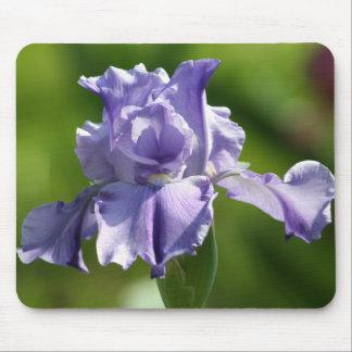 """Springtime Blues"" Iris Photography Mouse Pad"