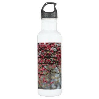 Springtime Buds Watercolor 710 Ml Water Bottle