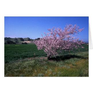 """Springtime"" Card"