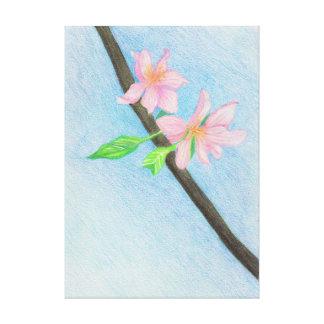 Springtime Cherry Blossoms, Colored Pencil Art Canvas Print