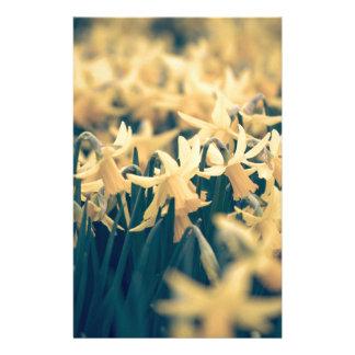 Springtime Daffodils Customised Stationery