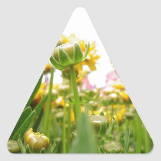 Springtime Flowers in Bloom Triangle Sticker