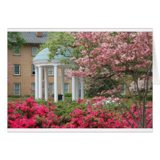Springtime in Chapel Hill Card