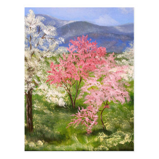 Springtime in Tennessee Postcard
