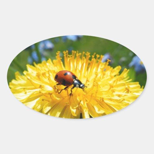 Springtime Ladybird on Dandelion Sticker