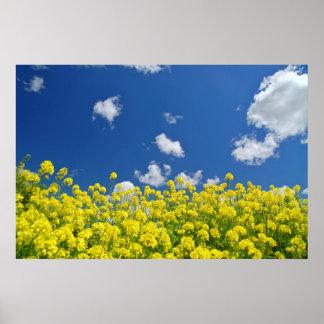 Springtime Meadow Poster