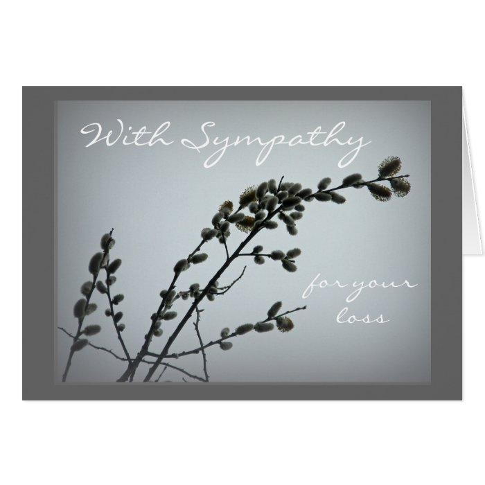 Springtime Pussy Willow Catkins Greeting Card