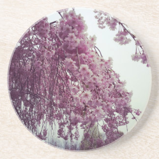 Springtime Sandstone Coaster