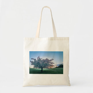 Springtime Sunrise, Flowered Tree at Dawn Tote Bag