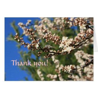 Springtime Thank You Card