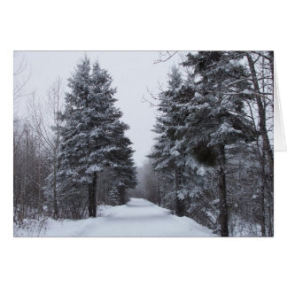Spruce Alley Card