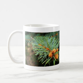 Spruce Branch Close-Up Coffee Mug