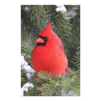 Spruce cardinal stationery