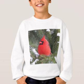 Spruce cardinal sweatshirt