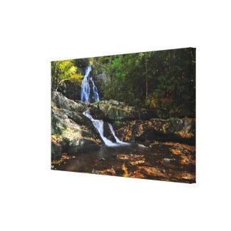 Spruce Flats Falls Canvas Canvas Print