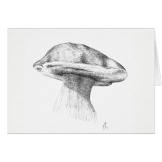 Spruce king bolete card