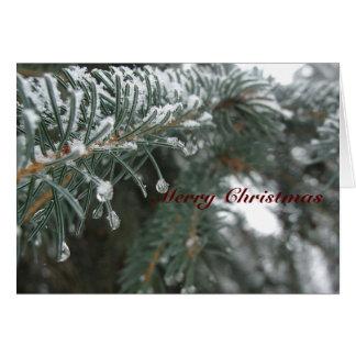Spruce Needles in Winter Card