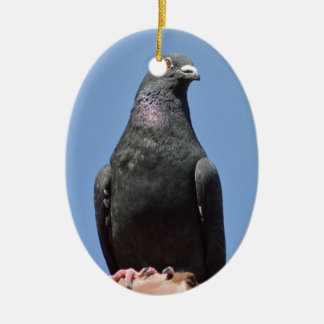 Spud the pigeon ornaments