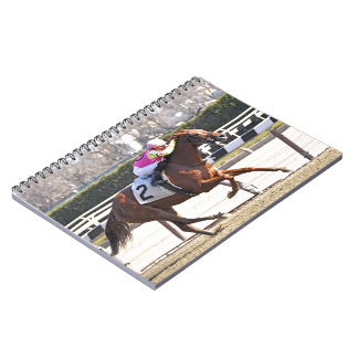 Spun Copper Notebook