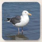 Spunky Wading Seagull Coaster