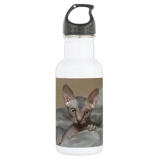 Spynx kitten 532 ml water bottle