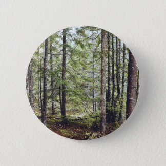 Squamish Forest Floor 6 Cm Round Badge