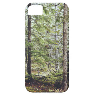Squamish Forest Floor Barely There iPhone 5 Case