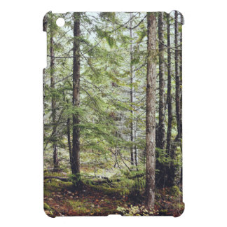 Squamish Forest Floor iPad Mini Cover