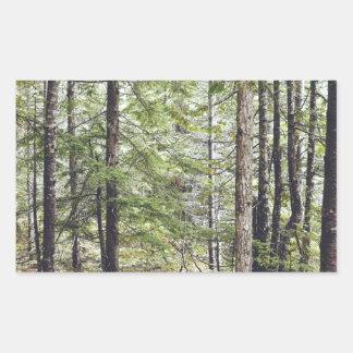 Squamish Forest Floor Rectangular Sticker