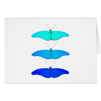 Square blue butterflies card