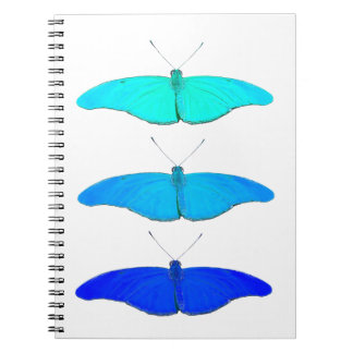 Square blue butterflies notebook