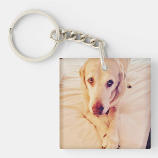 "Square Key Chain ""Troy Baby"" Lab"