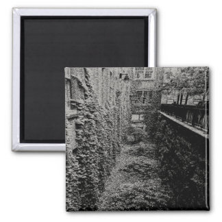 Square Magnet - Brick & Ivy Scene - Any Color