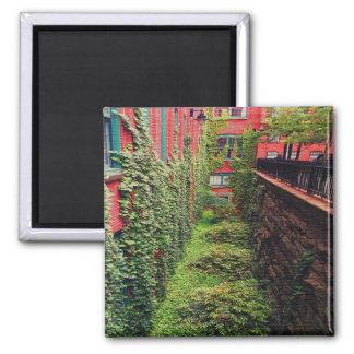 Square Magnet - Brick & Ivy Scene - Full Color