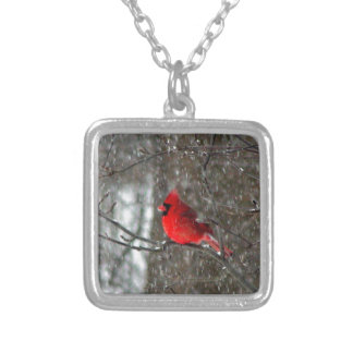 Square necklace with photo of male cardinal