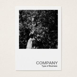 Square Photo 0170 - London Plane Tree Business Card