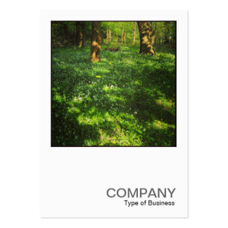 Square Photo 0469 - Spring in the Woods Business Card Templates