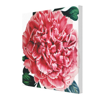 Square pink peony large image canvas