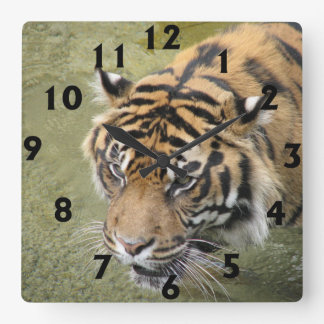 Square Tiger Clock