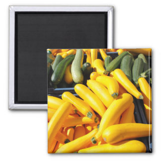 Squash in Yellow and Green Magnet