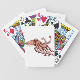 Squid - Octopus vulgaris Bicycle Playing Cards
