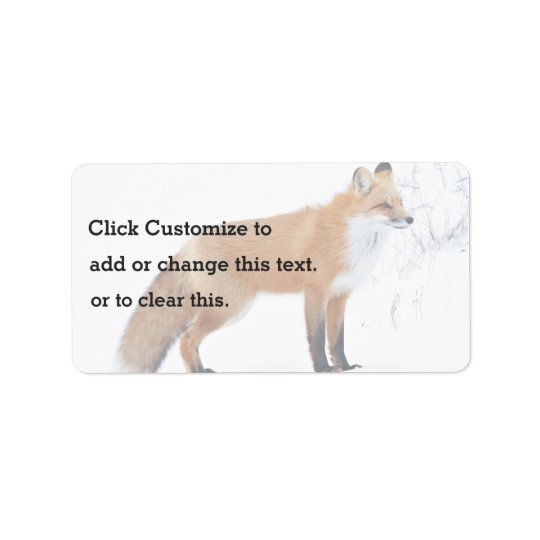 Squinting Fox Standing In Snow Label