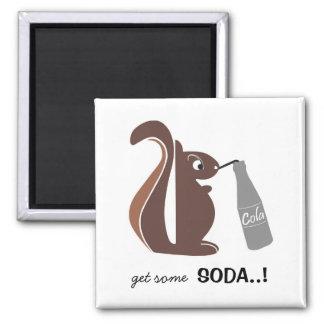 Squirrel 0025 nc square magnet