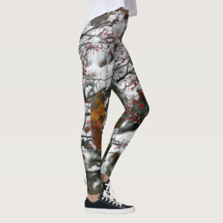 Squirrel 6233 leggings